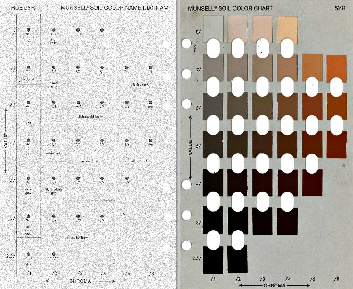 munsell soil color chart - People.davidjoel.co