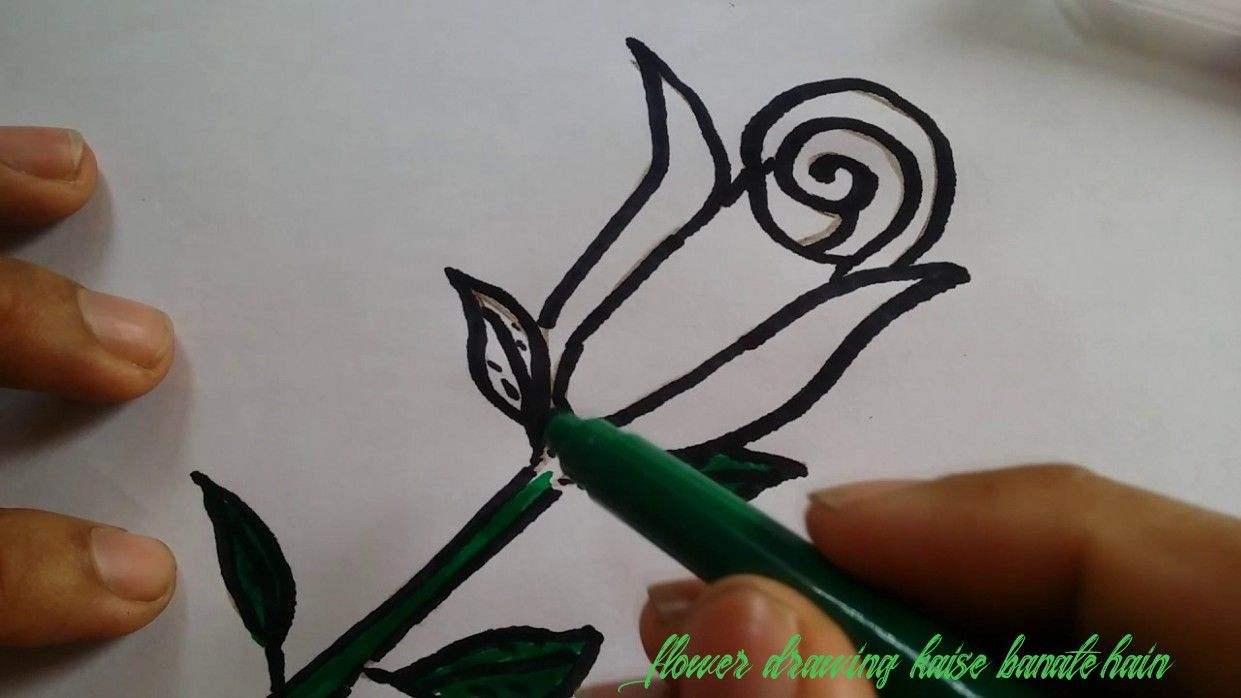11 Great Flower Drawing Kaise Banate Hain Ideas That You In 2020 Flower Drawing Drawings Drawing Lessons For Kids