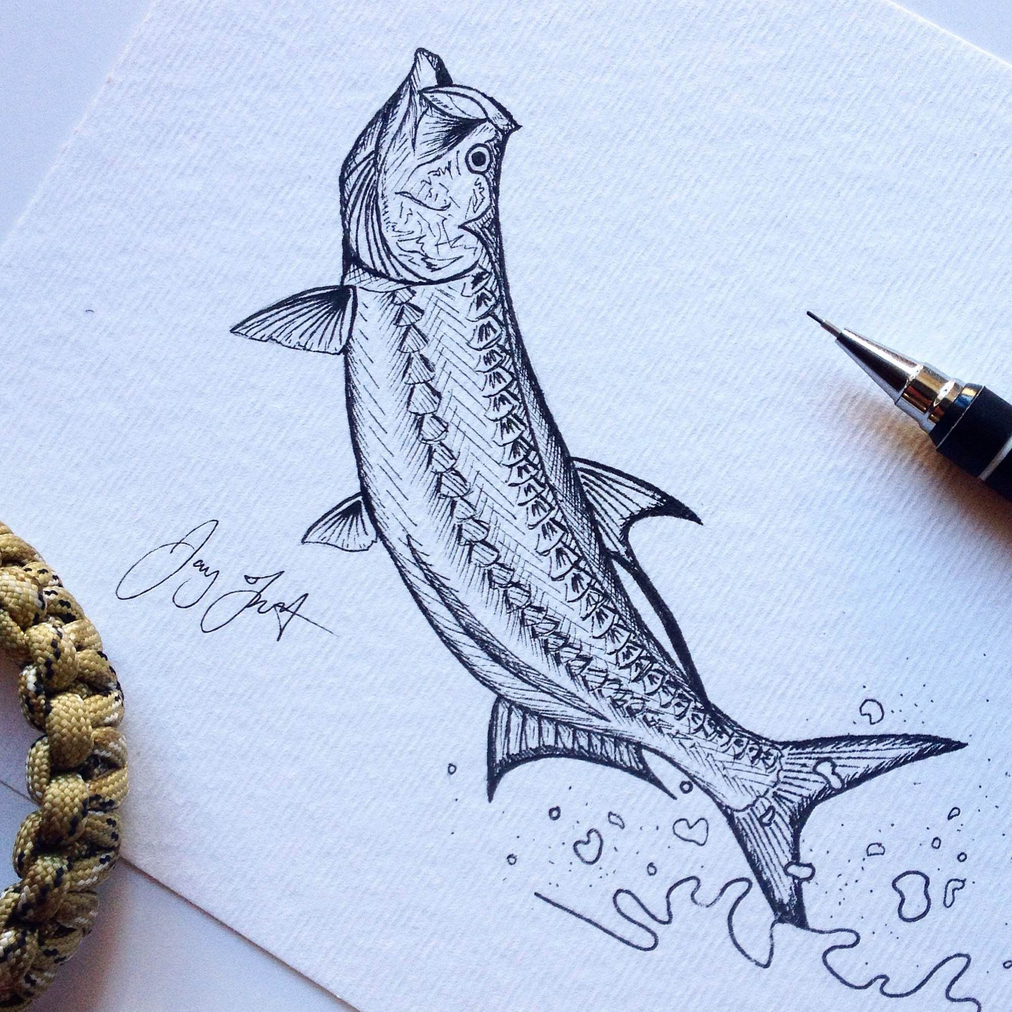 Jumping tarpon drawing illustration pinterest drawings jumping tarpon drawing nvjuhfo Images