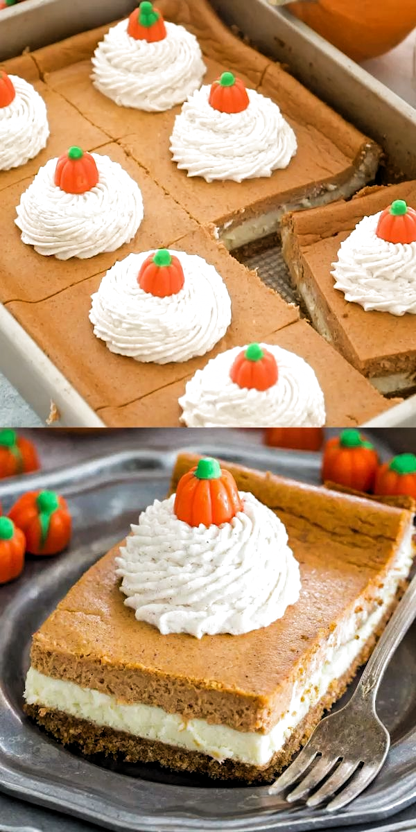 Pumpkin Cheesecake Bars are luxuriously creamy and rich, with lots of pumpkin flavor. Topped with a hefty amount of homemade cinnamon whipped cream. #pumpkin #pumpkinrecipes #thanksgiving #sweetandsavorymeals #recipevideo