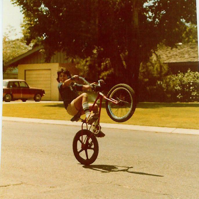 Bmx Panda Wheelie Bmx Bicycle Old School