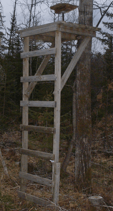 Picture of a deer stand with a swivel chair Hunting