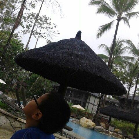 Bayu look at rain