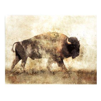 Childrens Home Decor Buffalo I Canvas Wall Art Print