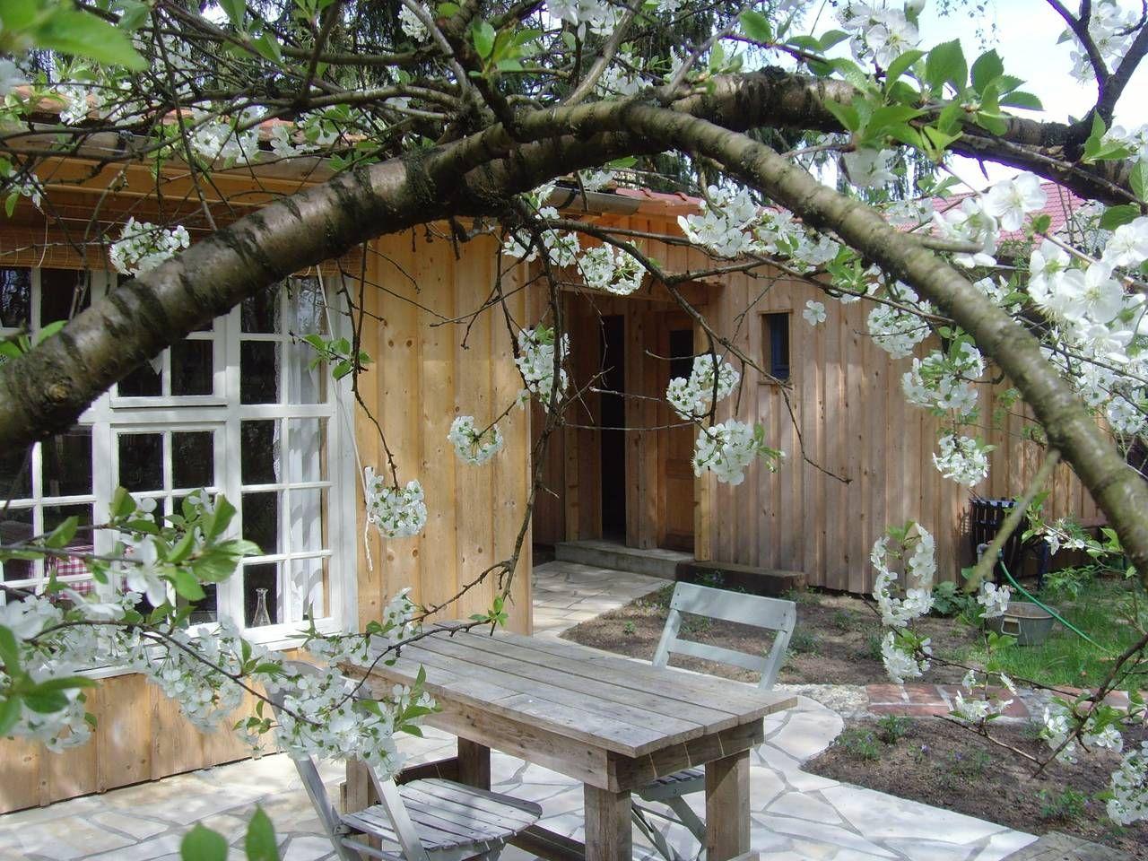Außergewöhnliche Holzhütte im Wald Hütten zur Miete in