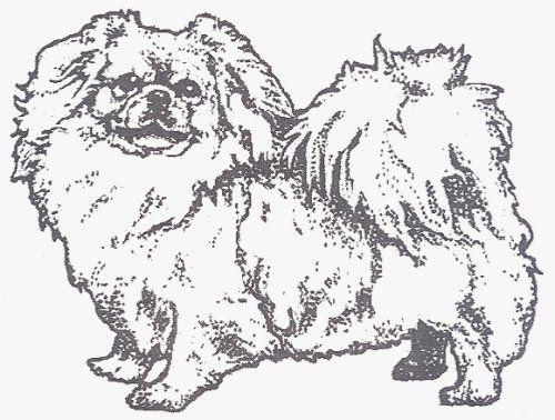"Dog Rubber Stamp Tibetan Spaniel1F (Size 23/4"" Wide X"