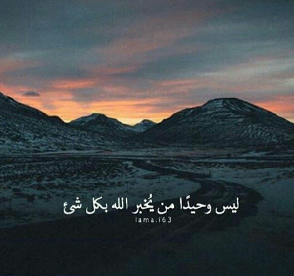 لست وحيدة Muslim Quotes Arabic Love Quotes Islam Facts