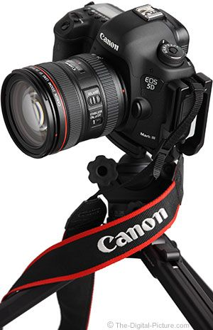 Canon DSLR Camera & Lens Reviews -- find yours, check out