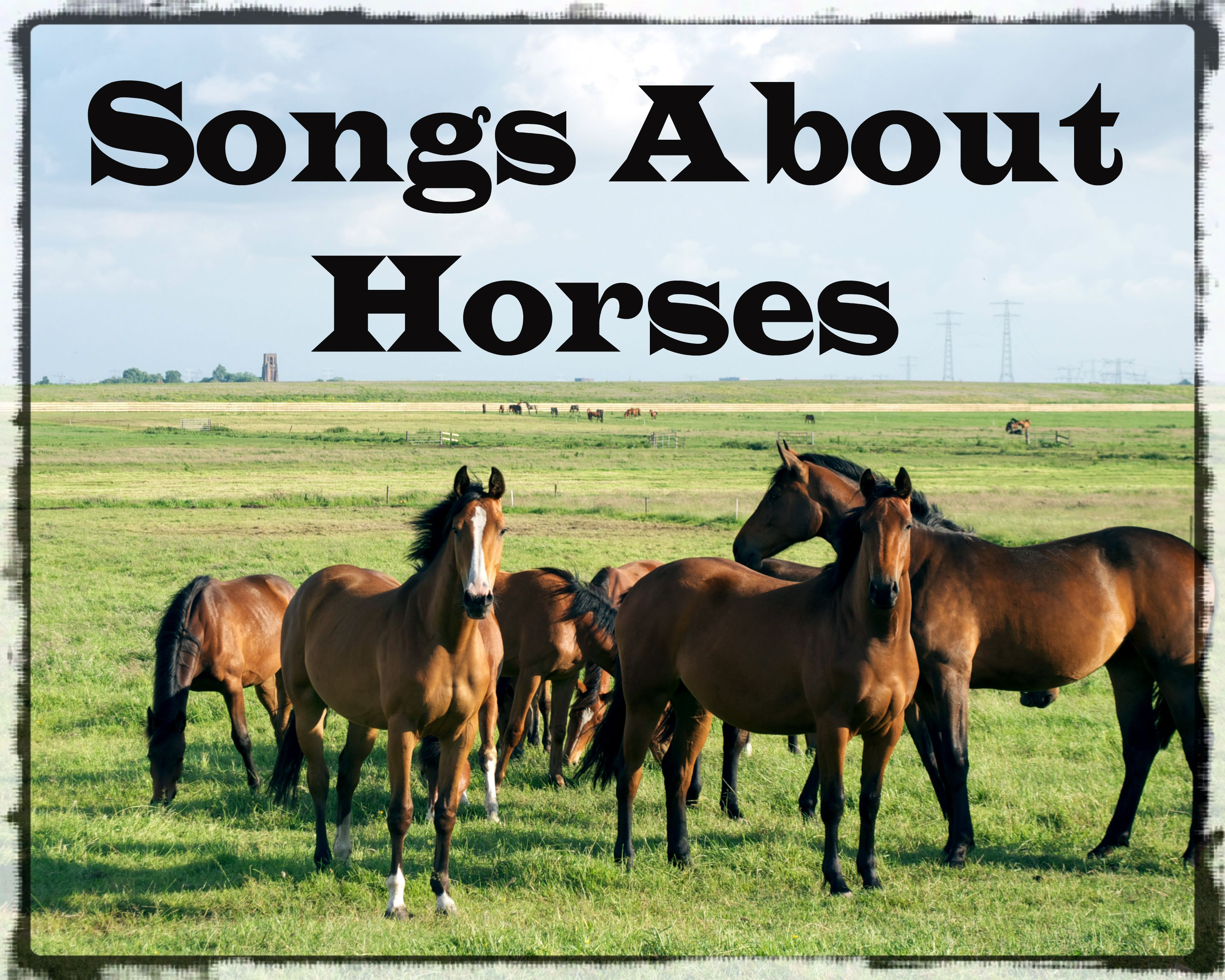 39 Songs About Horses Horses, Horse names