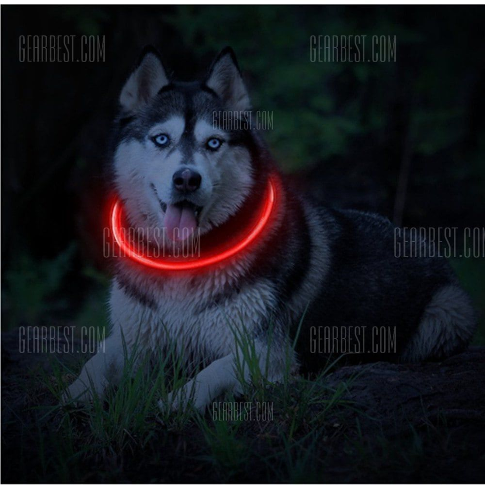 Pin On Werewolf