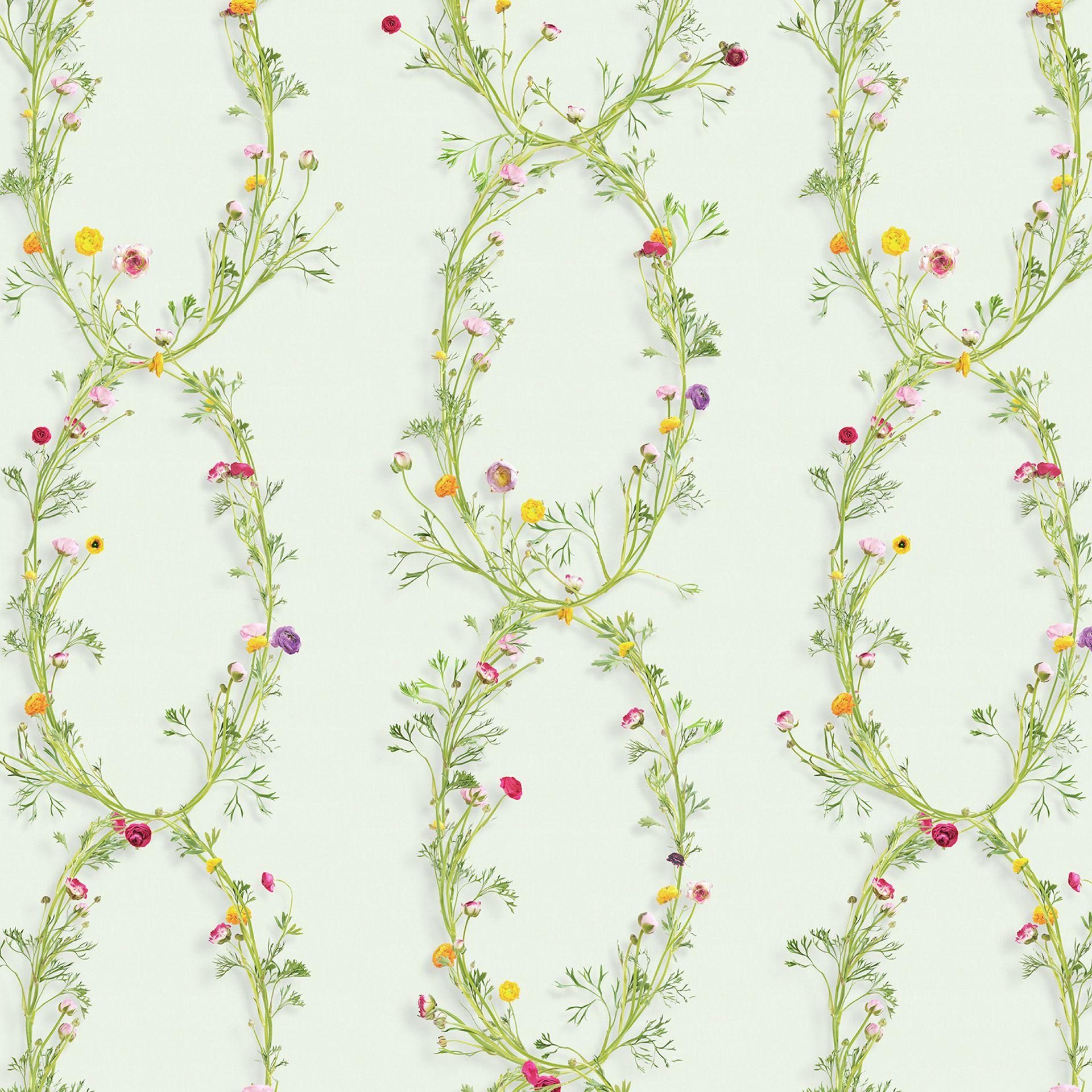 Um Papel De Parede Luminoso E Colorido Com Flores Ran Nculos  ~ Prateleiras Em Quarto Com Quarto Maria Antonieta