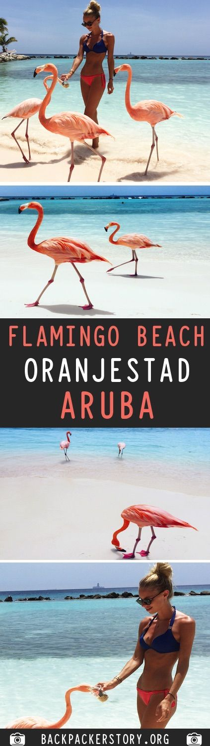 Flamingo Beach is located on the private