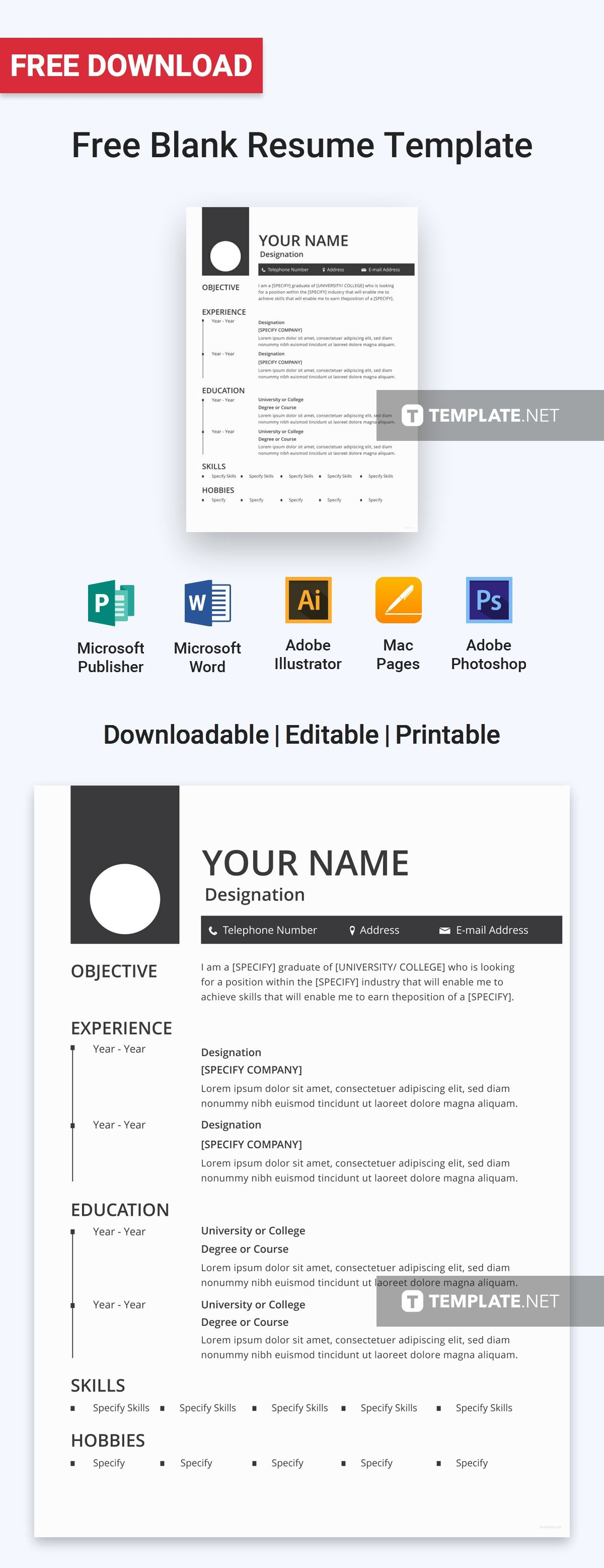 Free Blank Resume Extraordinary Free Blank Resume  Template Professional Resume Samples And .