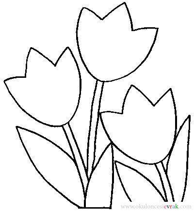 Lale çizimleri Okul öncesi Gauranialmightywindinfo