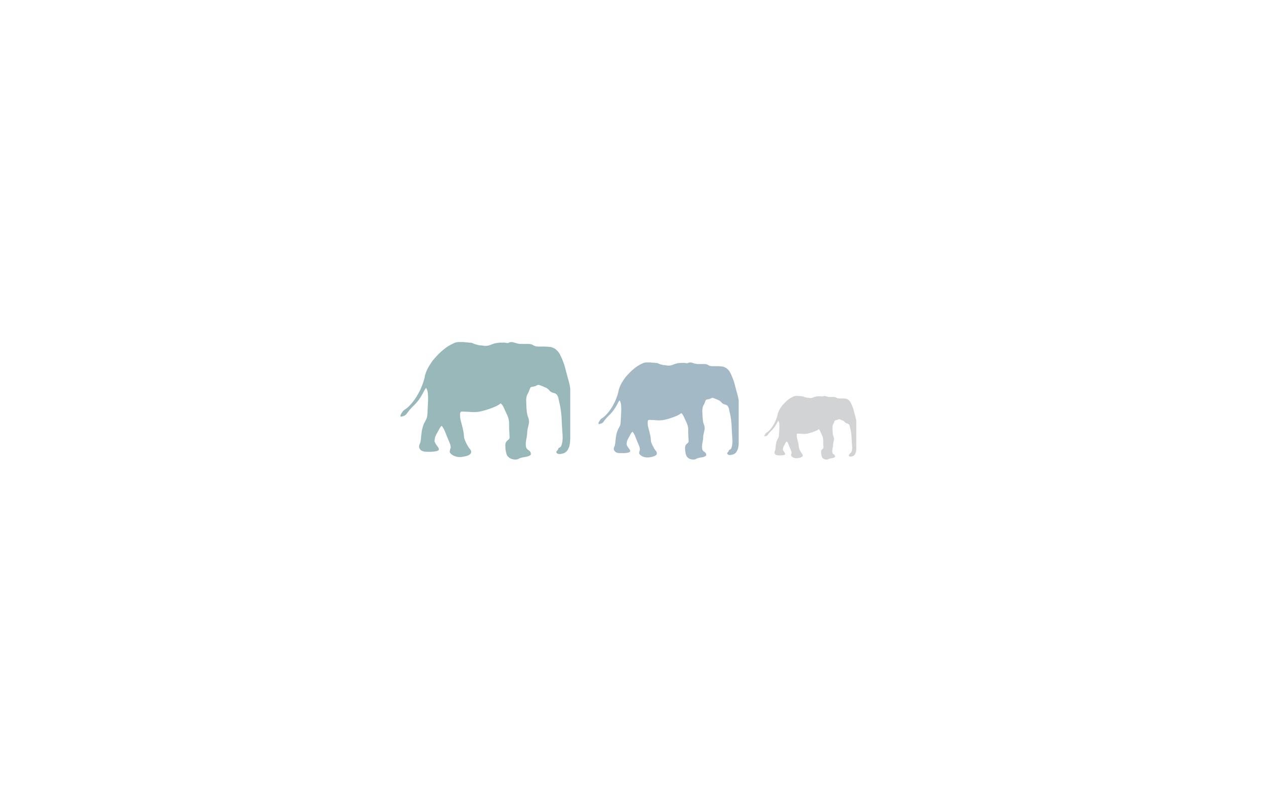 Elephants Elephant Wallpaper Wallpaper Minimalist Desktop Wallpaper