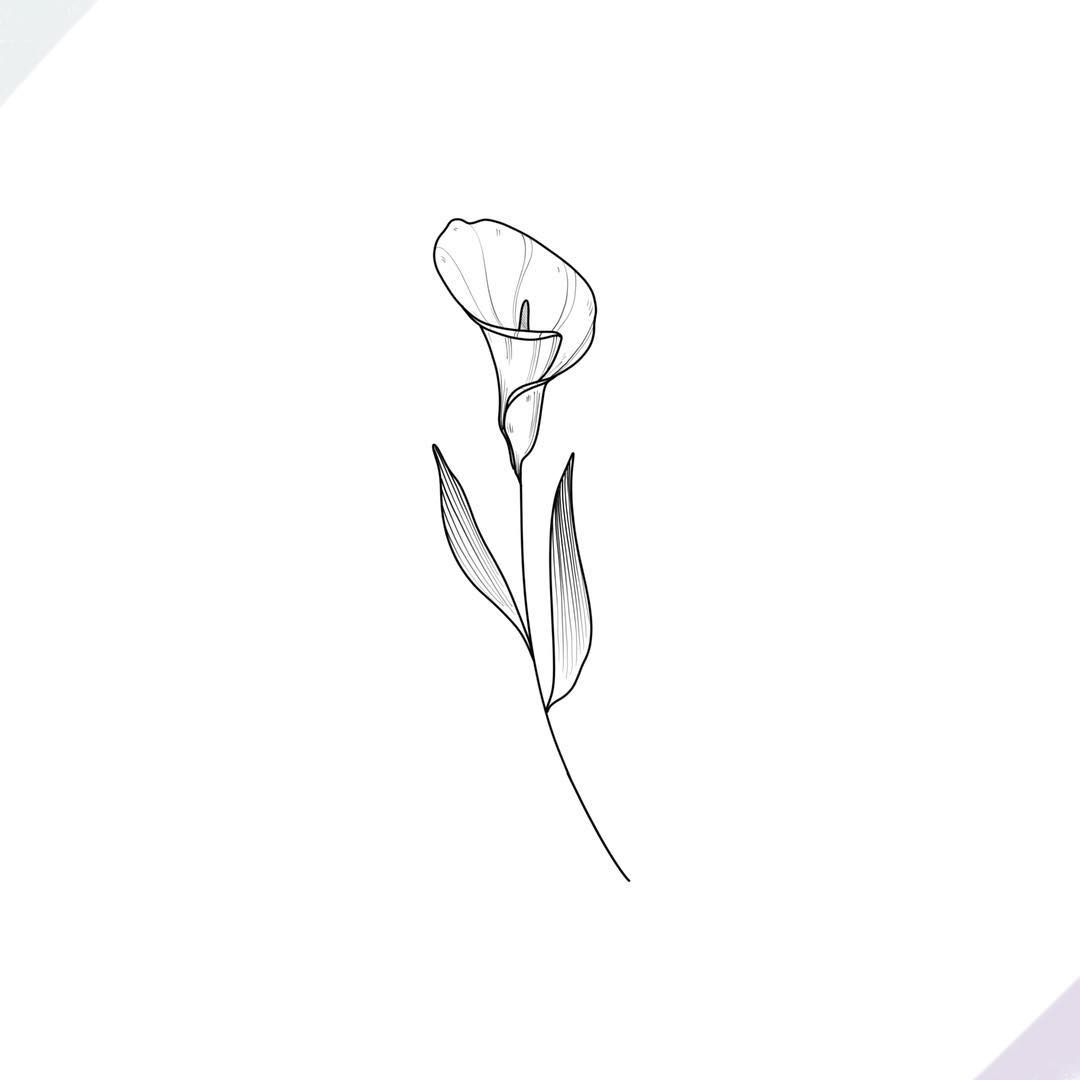 Calla Lily Getting Ready For An Amazingly Productive Week Calla Lily Tattoos Lily Flower Tattoos Lily Tattoo