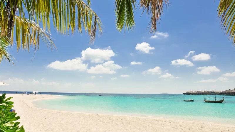 Virtual Background Zoom Pemandangan Latar Belakang Pantai