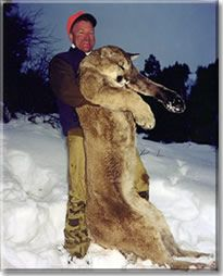 Mountain Lion Hunting, as glorified by Allred's Adventures, LLC