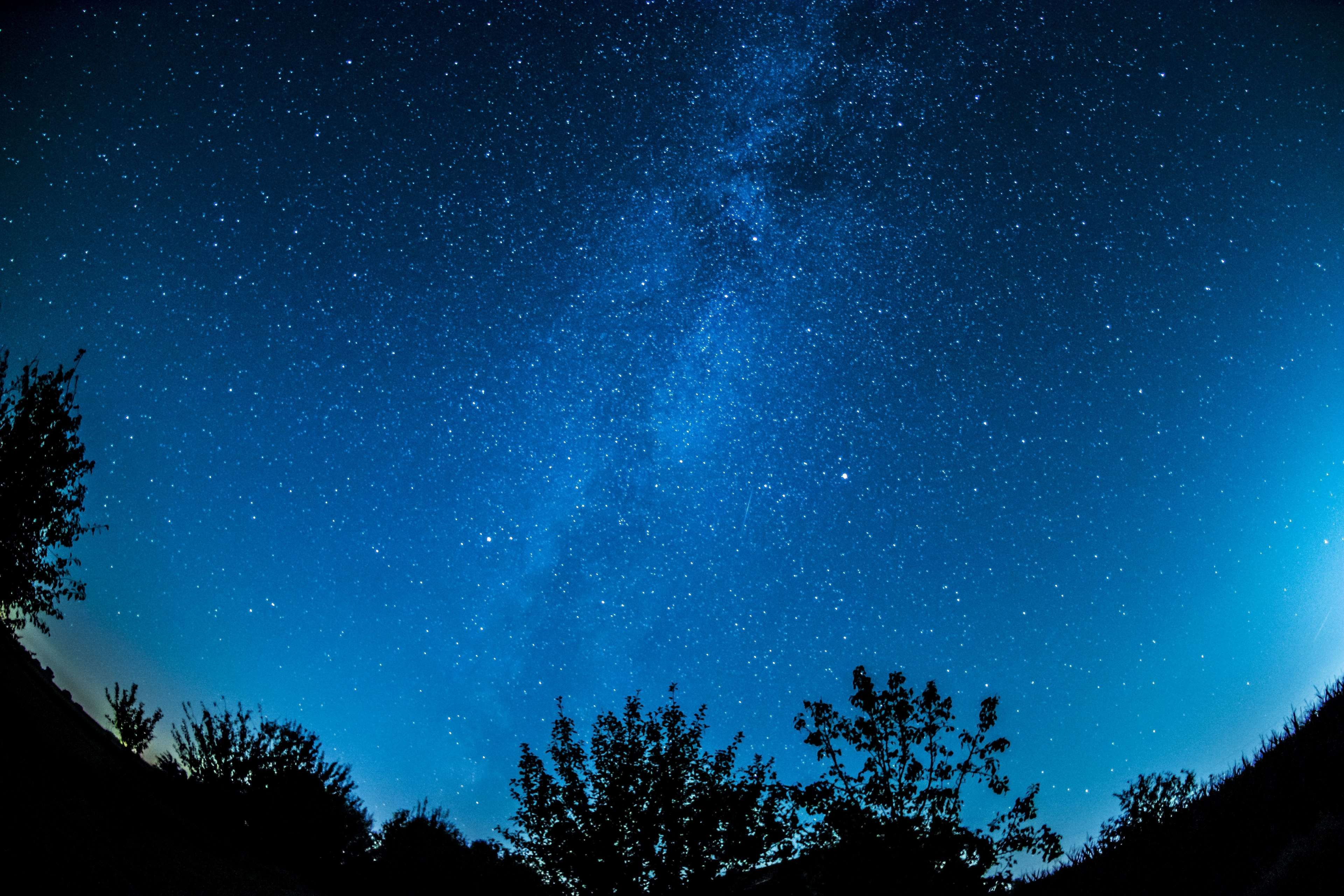 Astronomy Background Constellation Cosmic Cosmos Dark Evening Sky Exploration Forest Galaxy Landscape Milky Starry Sky Free Stock Photos Landscape
