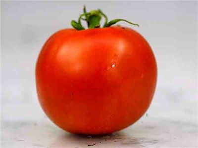 Bonnie Best Tomato Heirloom Used For Canning However 400 x 300