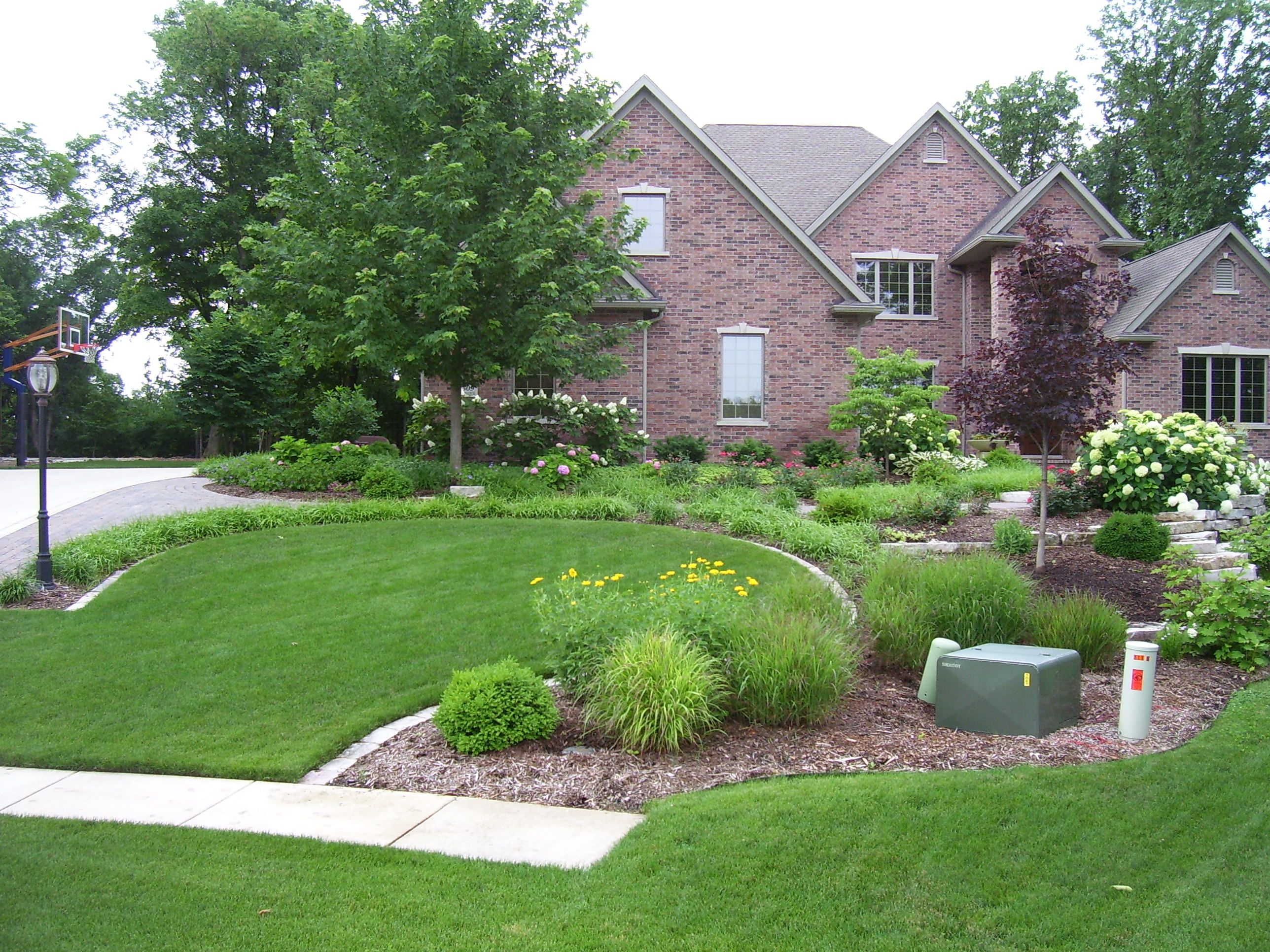 front landscaping-easement distraction | Front landscaping ...