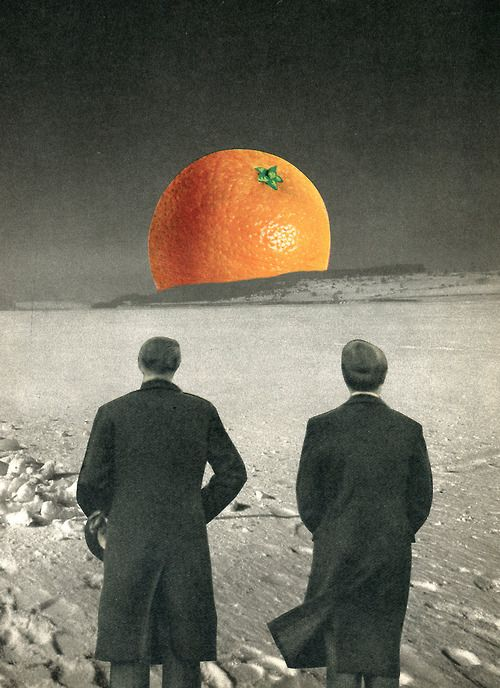 La terre est bleue comme une orange | WEIRD AND WONDERFUL ...