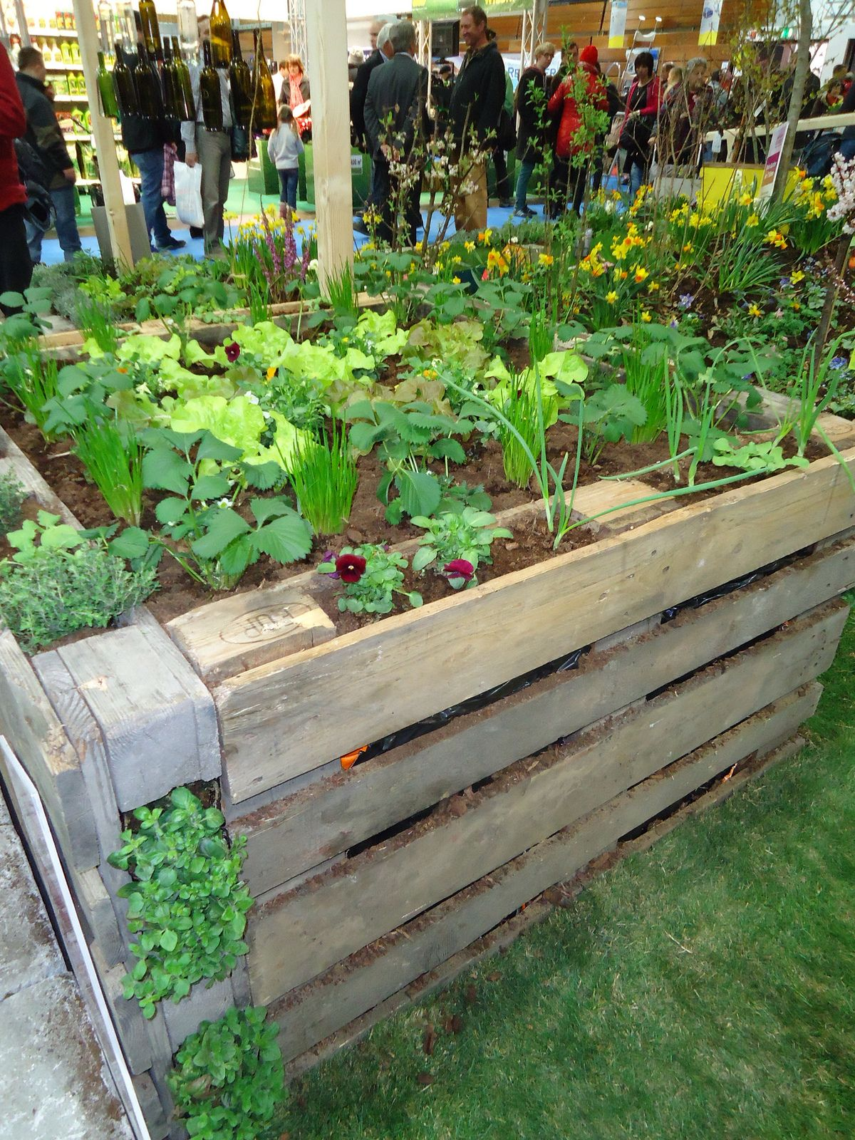 raised flower bed made of pallets - Pallet Garden Bed