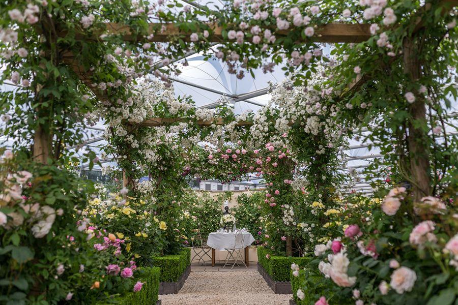 Our Exhibit, RHS Chelsea Flower Show 2018 Chelsea flower
