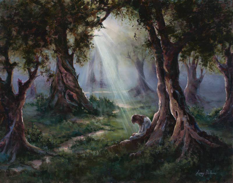The Garden Of Gethsemane Pictures Of Jesus Christ Jesus Pictures Garden Of Gethsemane