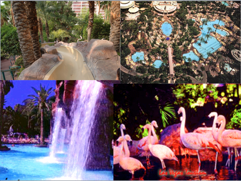 Flamingo Hotel Las Vegas has a Flamingo Conservatory and AMAZING POOLS AND WATERFALLS : )