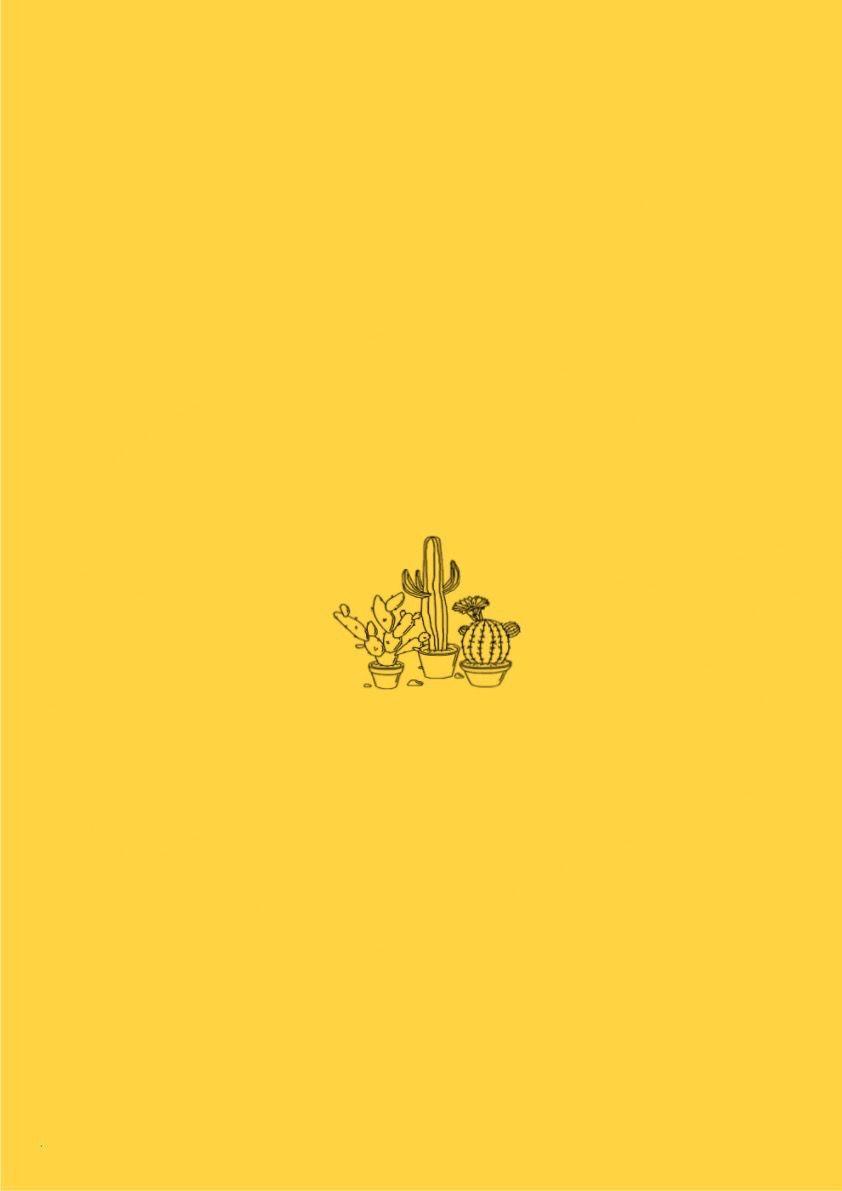 Cactus Yellow Aesthetic Iphone Wallpaper Yellow Yellow Background