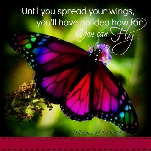Butterfly quote | HUMOR - Sayings and Stuff | Butterfly ...