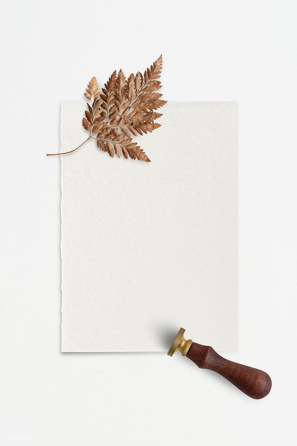 Download Premium Psd Of Dried Brown Leaf On White Paper With A Wax Seal Wax Seals Flower Phone Wallpaper Paper Background Texture