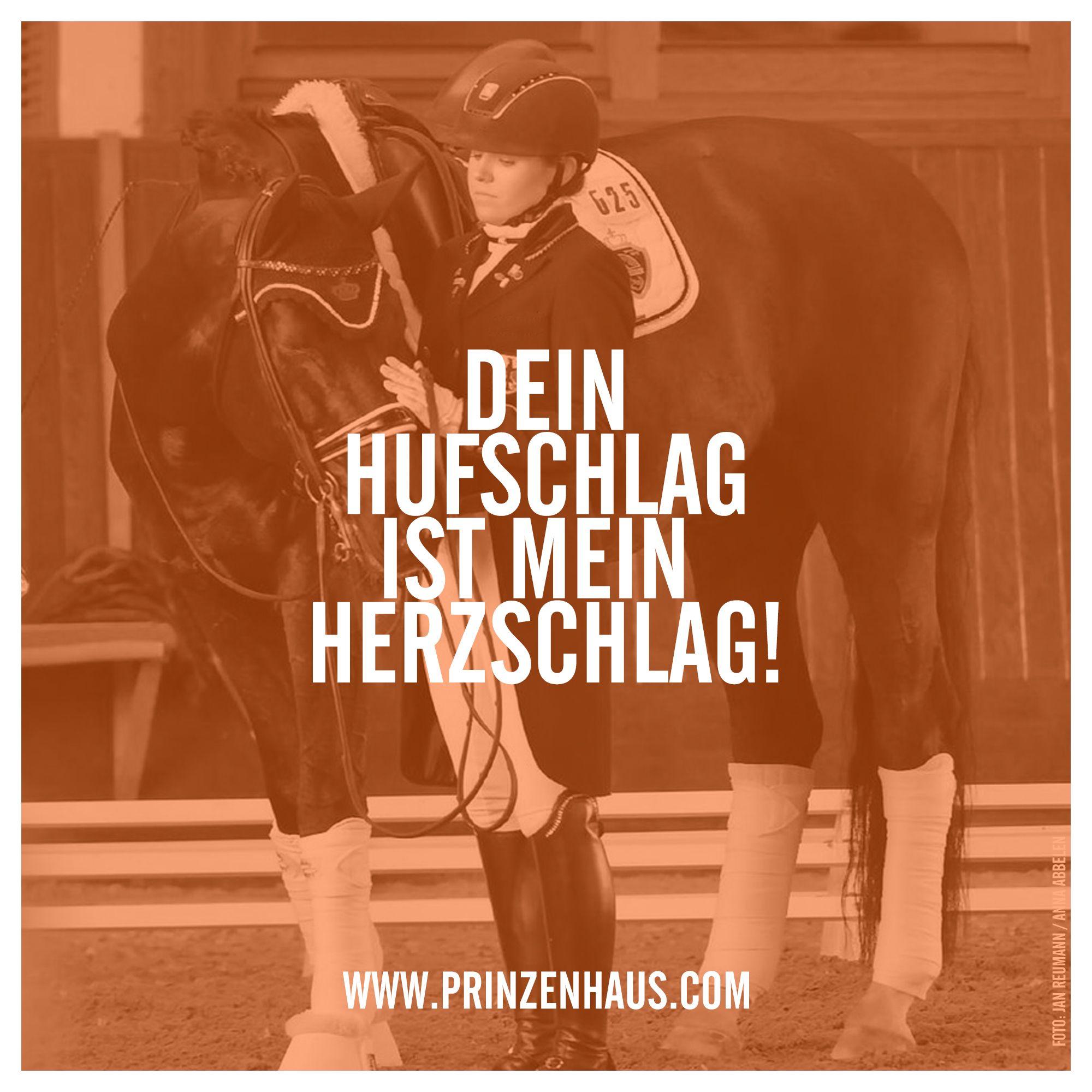 Www.prinzenhaus.com DEIN HUFSCHLAG IST MEIN HERZSCHLAG.
