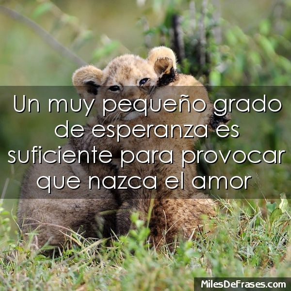 Poemas De Amor Tristes Para Facebook