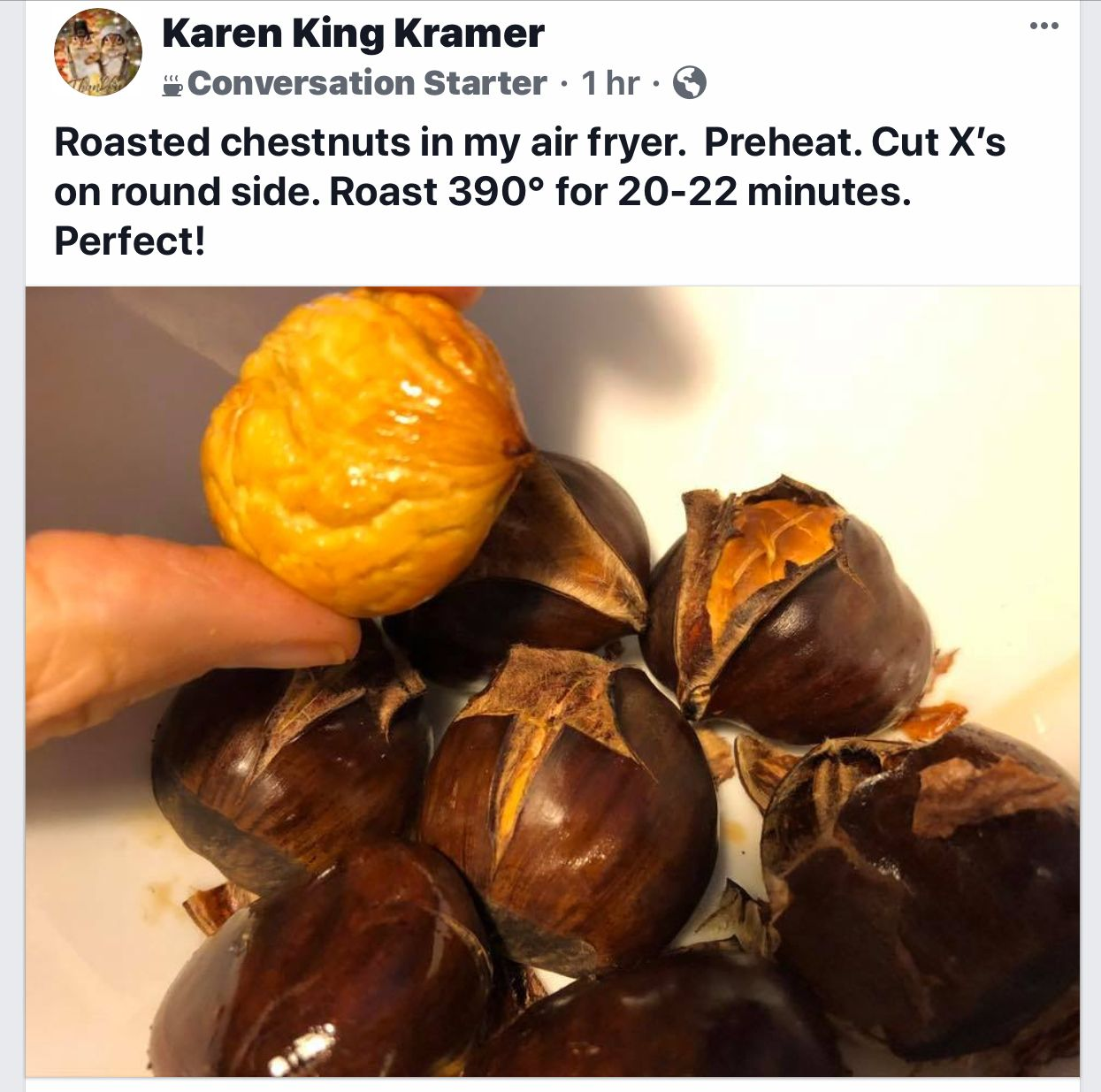 Air fryer Roasted Chestnuts Roasted chestnuts, Recipes