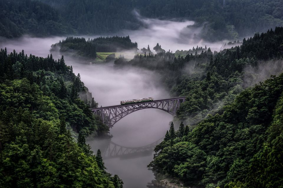 2017 National Geographic Nature Photographer Of The Year Winners With Images Nature Photographs Cool Landscapes Japanese Landscape