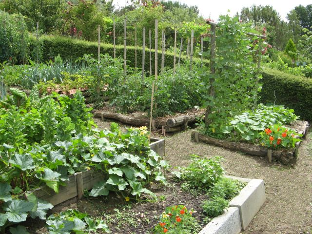 Potager en pente gardening pinterest lager et fils for Amenagement potager idees