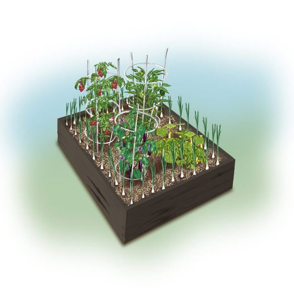 Planting Plans (With Images)