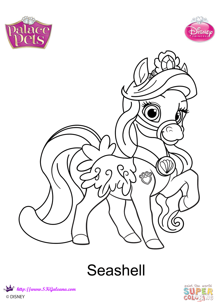 Palace Pets Seashell Coloring Page Free Printable Coloring Pages
