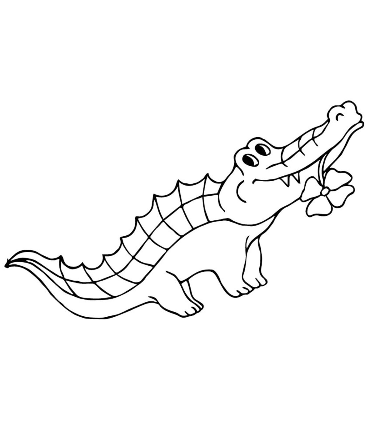 Cute Alligator Coloring Pages Animal Coloring Pages Coloring Pages Coloring Pages For Kids