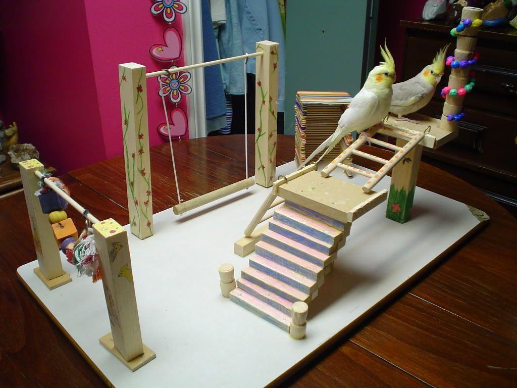 DIY Playgyms Talk Cockatiels Forums Diy, Bird toys, Decor
