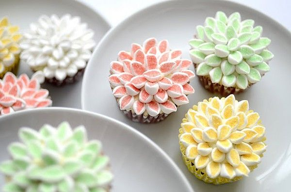 Chrysanthemum cup cakes