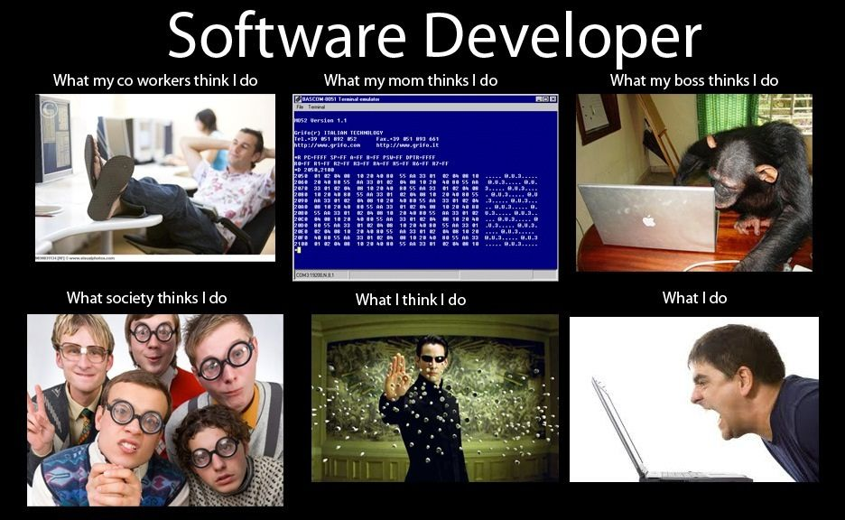what a software developer does Programmer jokes