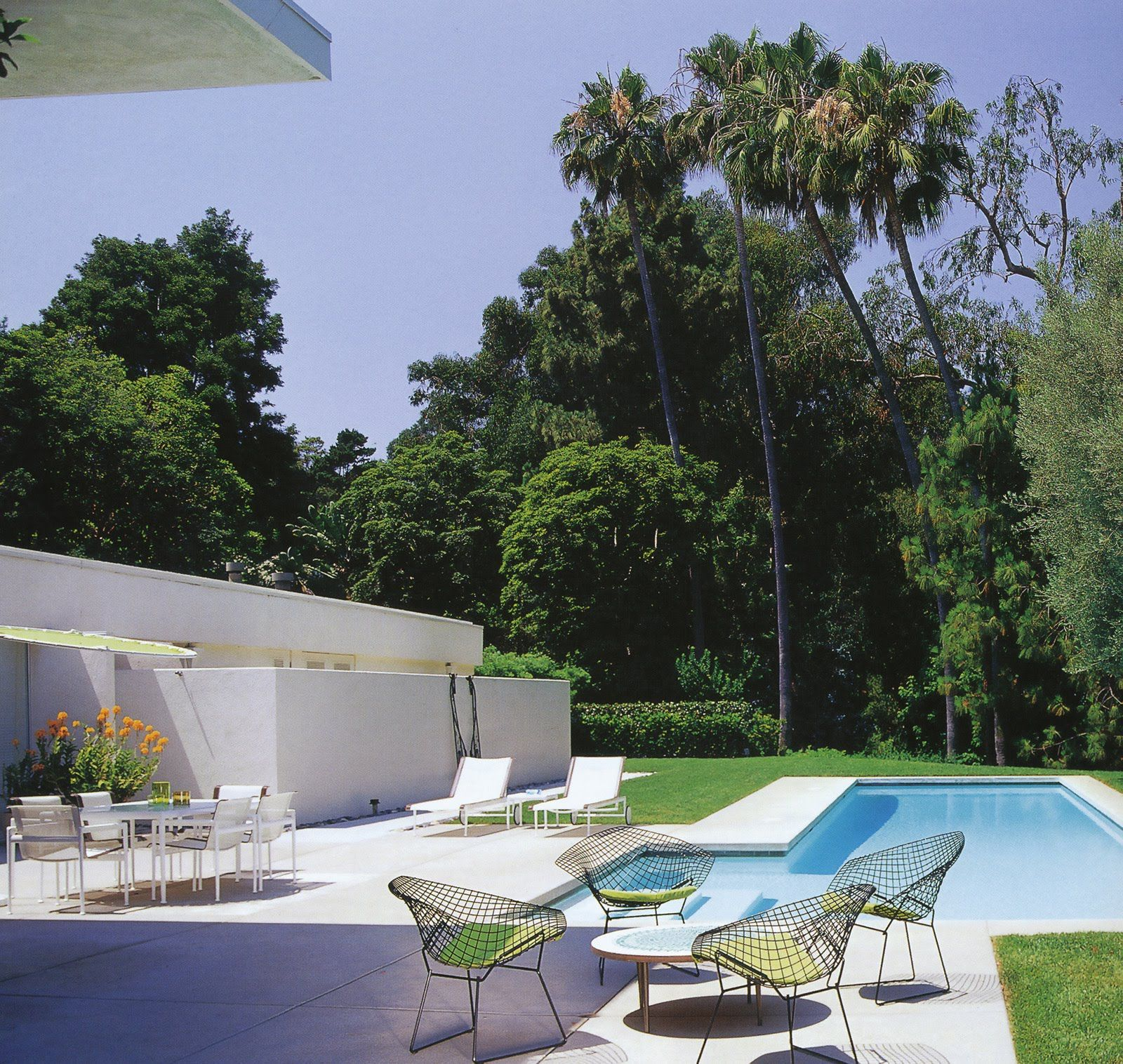 1000 images about pool on pinterest modern pools concrete pool and pools