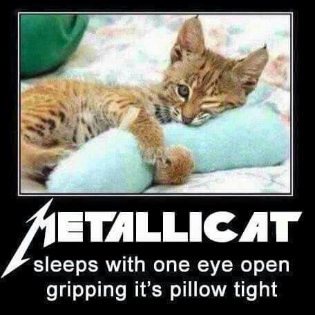 Metallica t