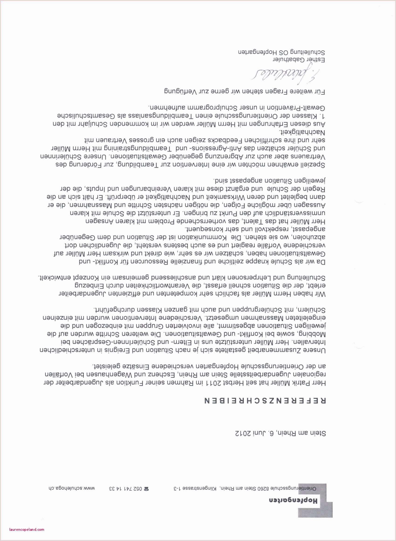 Lebenslauf Vorlage Schuler Englisch In 2020 Resume Words Resume Examples Functional Resume