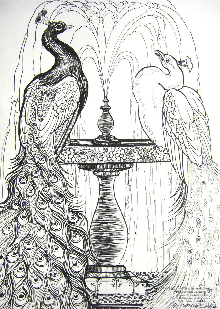 Blue and White Peacocks by HouseofChabrier.deviantart.com on