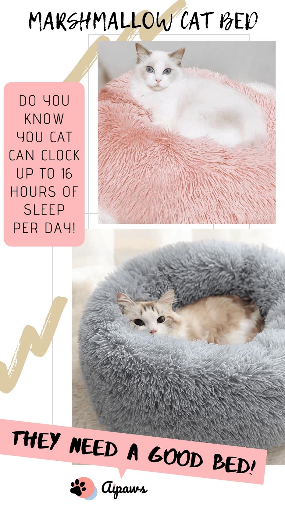 Rainbow Marshmallow Cat Bed Calming cat, Cute cats