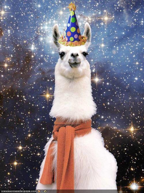 Llama Wearing Birthday Hat
